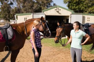 The Equestrian Community is all about a shared passion