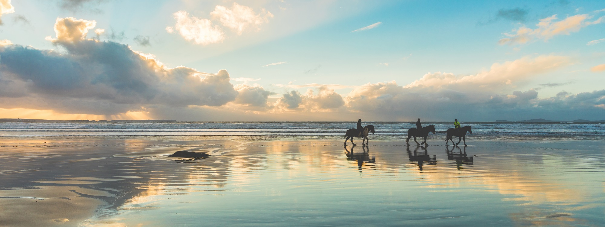 Beach Ride - Great Equine Photograph