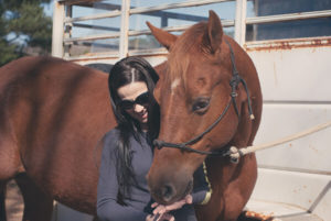 Sharing equestrian passion