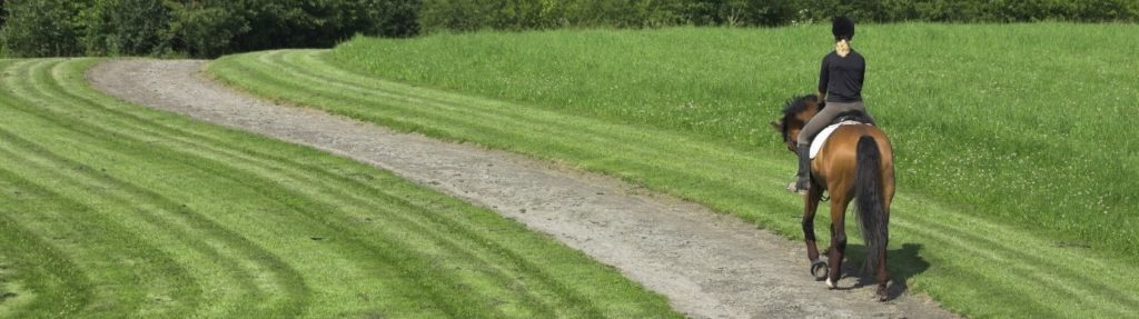 Horse fitness for eventing