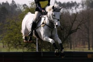 Cross country schooling for the eventing season