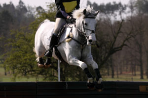 Cross country school for the eventing season