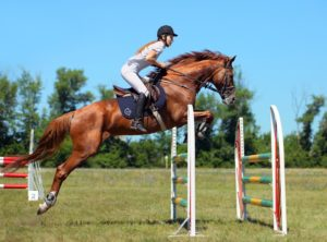 coping with warm up nerves during show jumping