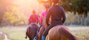Huufe's tips for find new routes to go horse riding on