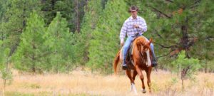 western rider out on his horse