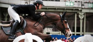 Bay horse show jumping
