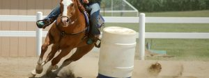 barrel racer in competition