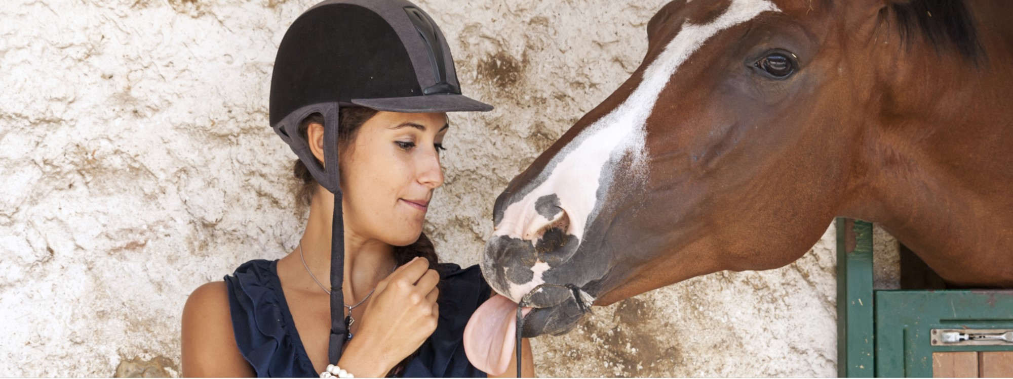 Horse rider and her horse