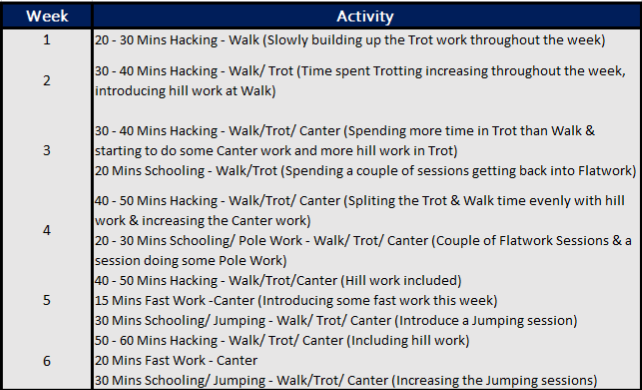 exercise routine horse riding apps
