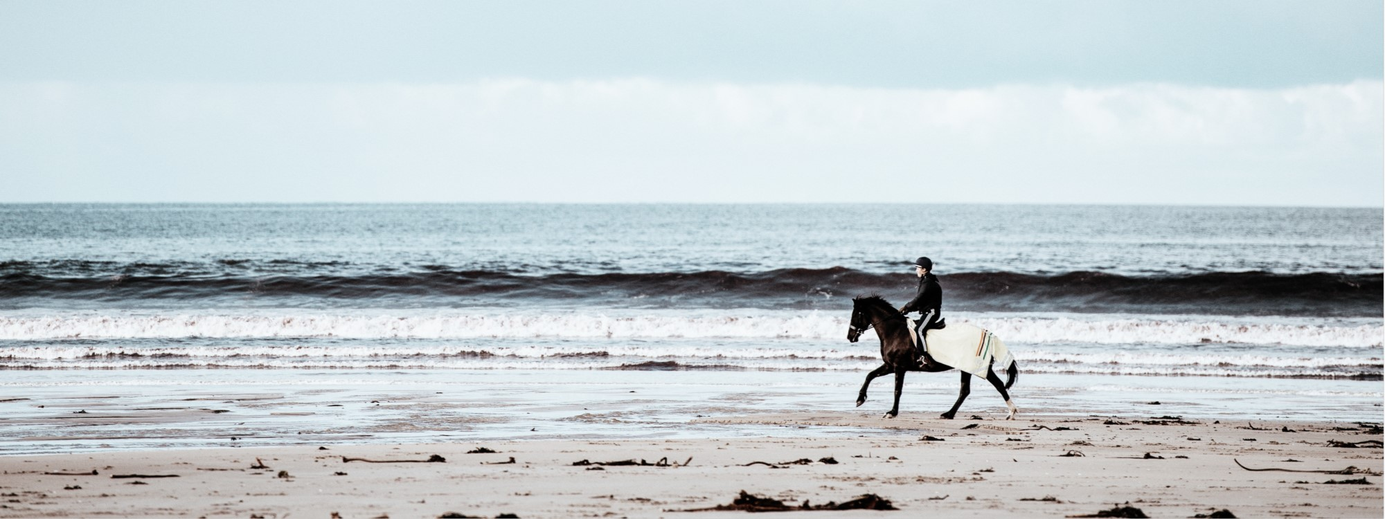 horse riding apps for beaches