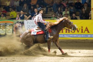 quarter horse in a reining compeition