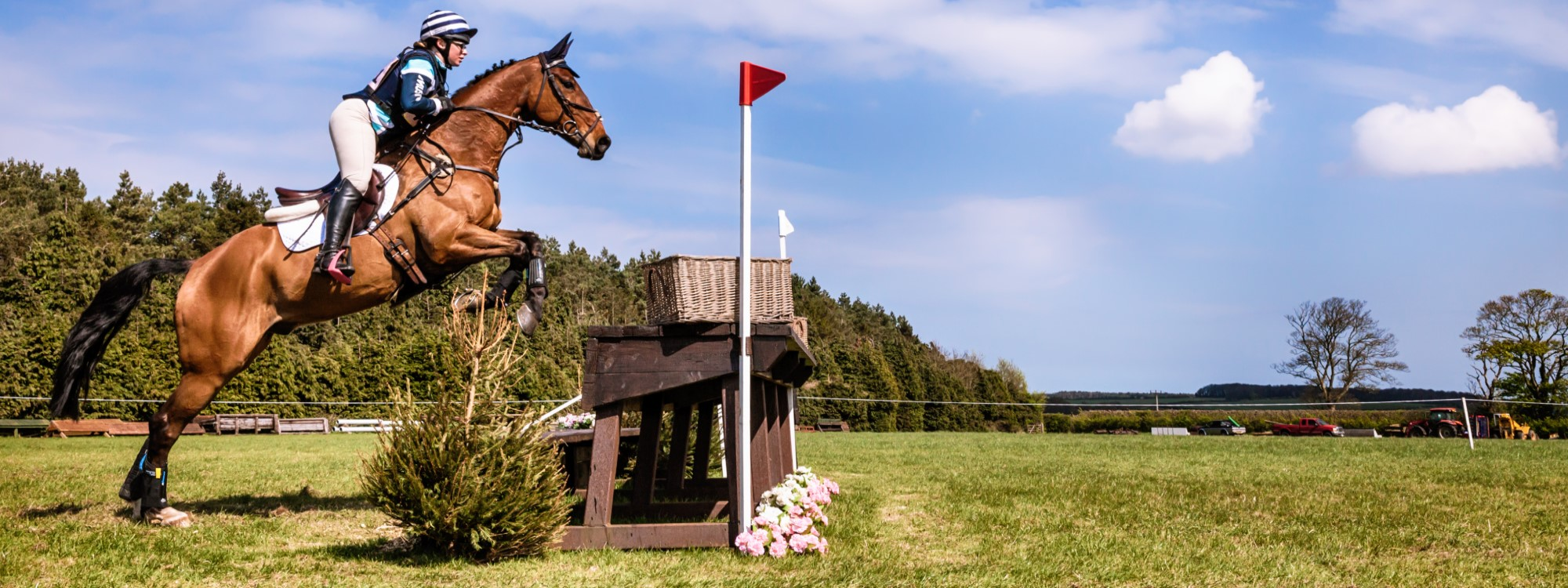 horse competing in cross country